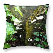 Natures Right Angle Degrees Throw Pillow