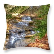 Natures Shadows And Light Throw Pillow