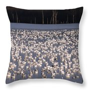 Nature's Show Throw Pillow