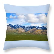 Nature's Spectacle Throw Pillow