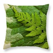 Nature's Still Life 3 Throw Pillow