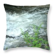 Nature's Vortex Throw Pillow