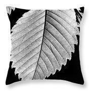 Natures Wonders Throw Pillow