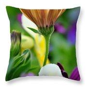 Natures Yoga Throw Pillow