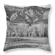 Ncar And Flatiron View Boulder Colorado Bw Throw Pillow