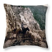 Near The Bagatski Bridge - Caucasus - Russia Throw Pillow