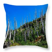 Near The End Of The Blow Out  Throw Pillow