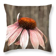 Nearing The End Throw Pillow