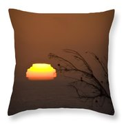 Nearly Gone Throw Pillow