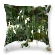 Nearly Spring Throw Pillow
