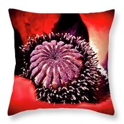 Nebulous Poppy Throw Pillow