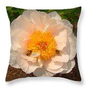 Nectar Collection Throw Pillow