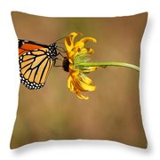Nectar Delight Throw Pillow