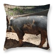 Need A Drink Throw Pillow