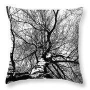 Neighbours Birch ... Throw Pillow