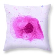 Neisseria Meningitidis Throw Pillow