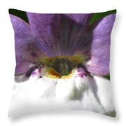 Nemesia From The Tapestry Mix Throw Pillow