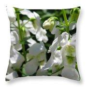 Nemesia Named Poetry White Throw Pillow