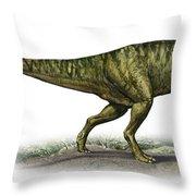 Neovenator Salerii, A Prehistoric Era Throw Pillow