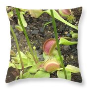 Nepenthes Throw Pillow
