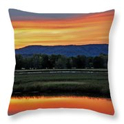 Nerepis Marsh At Dusk IIi Throw Pillow