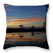 Nerepis Marsh Sunset Throw Pillow