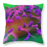 Nerve Synapses In Aplysia, Sem Throw Pillow