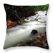 Netravali Throw Pillow