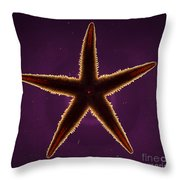 Netted Sea Star Throw Pillow