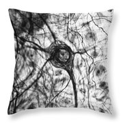 Neuron, Tem Throw Pillow