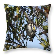 Never Hungry Throw Pillow