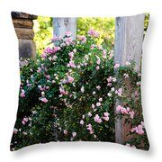 Never Promised You A Rose Garden... Throw Pillow