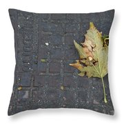 Never Wanted To Come Down Throw Pillow