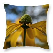 New Cone Flower Throw Pillow