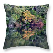 New England Fall Reflection Throw Pillow
