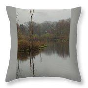 New England Swamp Throw Pillow