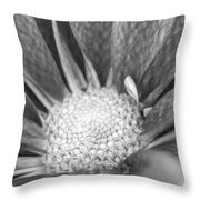 New Growth Grey Throw Pillow