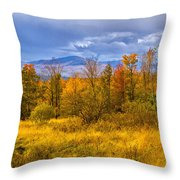 New Hampshire Fall Color Part Deux Throw Pillow