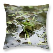 New Hampshire Frog Throw Pillow