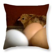 New Hatching Throw Pillow