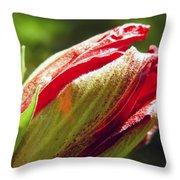 New Hibiscus Throw Pillow