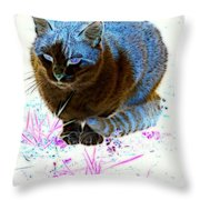 New Kitty Blue Throw Pillow