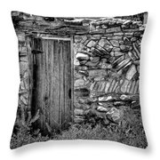 New Mexico Door IIi Throw Pillow