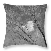 New Mexico Series - A Cloud Behind Black And White Throw Pillow