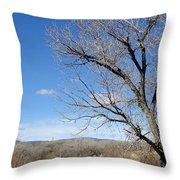 New Mexico Series - A View Espanola Throw Pillow