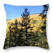 New Mexico Series - Autumn On The Mountain II Throw Pillow