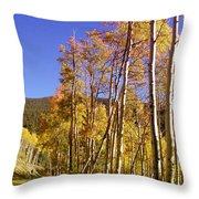 New Mexico Series - Autumn On The Mountain Throw Pillow