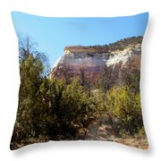 New Mexico Series - Bandelier IIi Throw Pillow