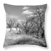 New Mexico Series - Bare Beauty Throw Pillow