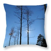 New Mexico Series - Bare Tree Sky  Throw Pillow